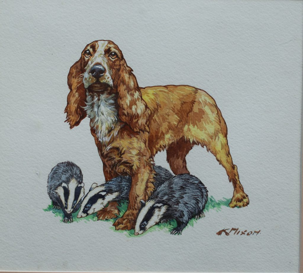 Spaniel with Badgers - Kay Nixon - Watercolour