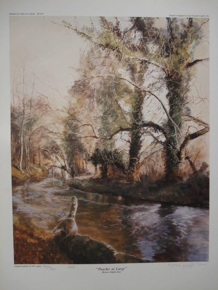 Poacher at Large - M Height-Jones - Print