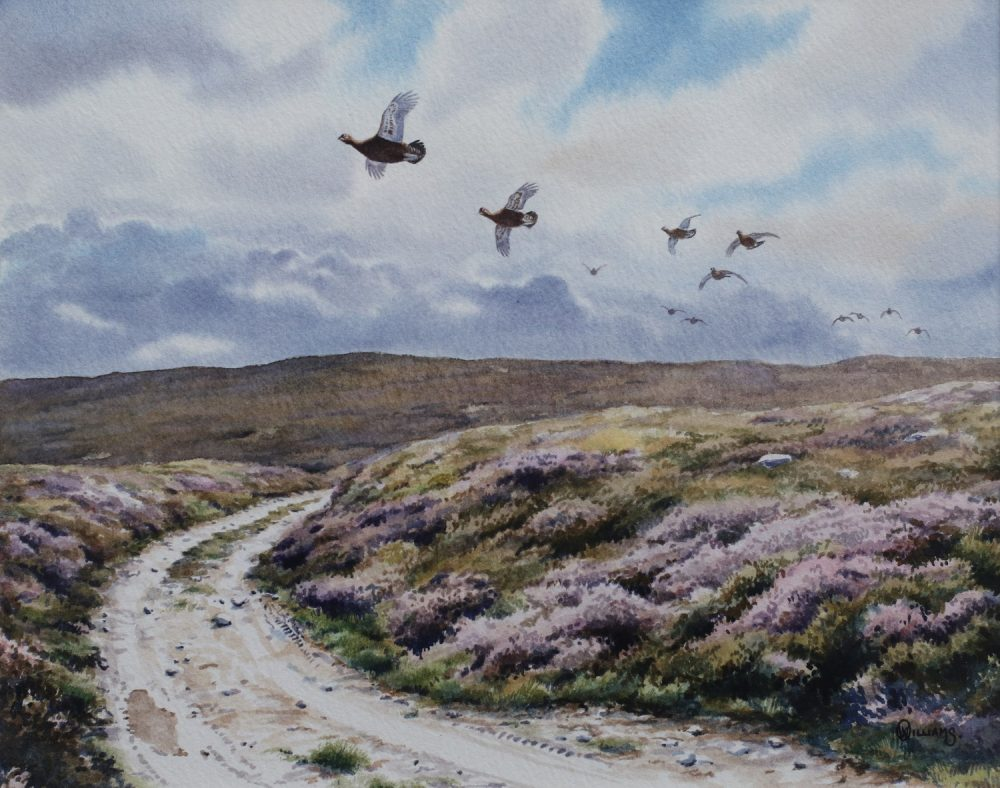 Grouse Across the Track - Owen Williams - Watercolour