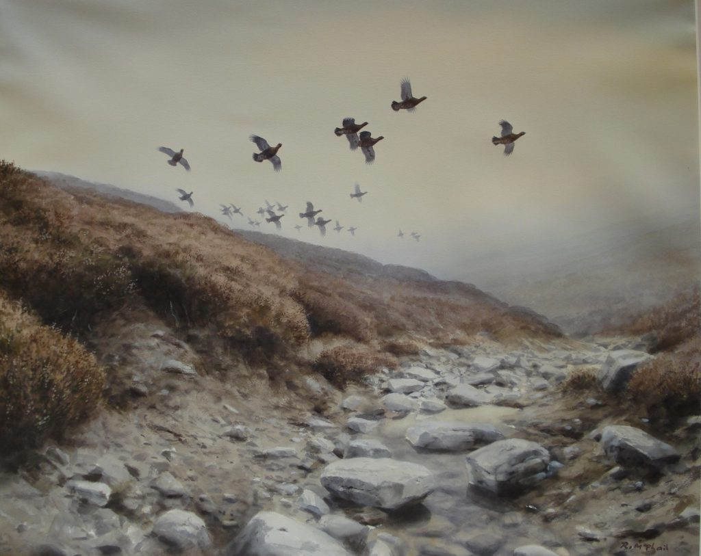 Early Morning Grouse - Rodger McPhail - Watercolour