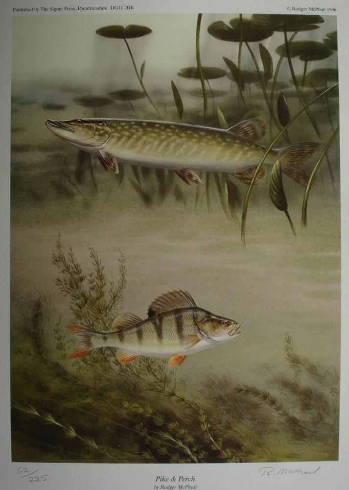 Pike & Perch - Rodger McPhail Print