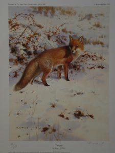 The Fox Rodger McPhail