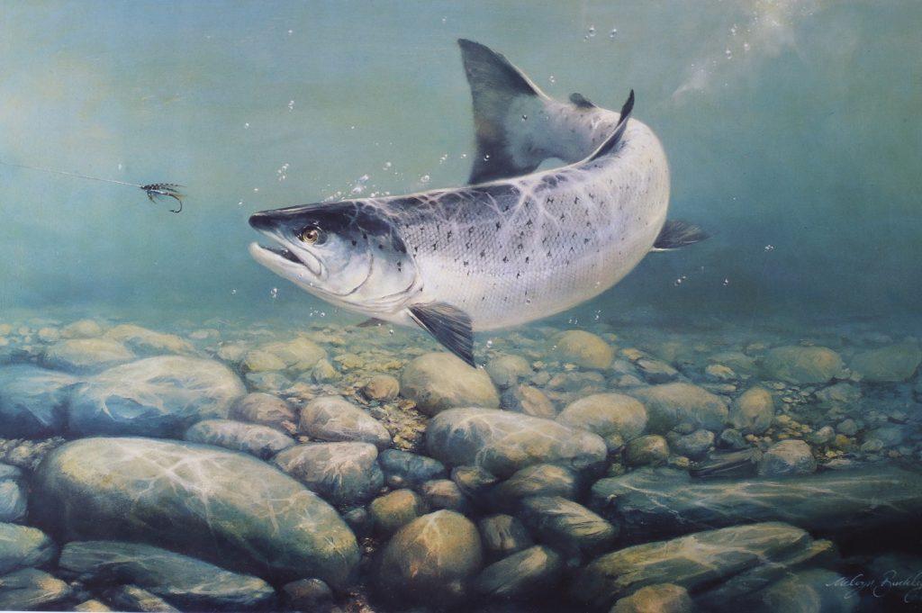 Monach of the River - Melvyn Buckley - Print