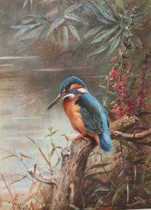 Kingfisher on the Lookout by Archibald Thorburn