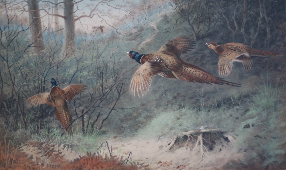 The Glory of Autumn - Archibald Thorburn - Hand Painted Lithograph