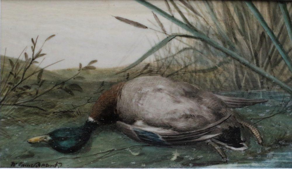 Dead Drake Mallard - William Cruickshank