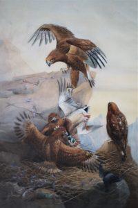 Eagles Feeding Time - S F Biddulph 1902