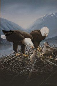 Bald Eagles - Trevor Boyer